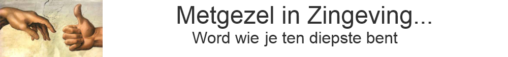 Metgezel in Zingeving